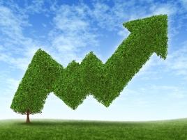 green-business-best-practices-bottomline